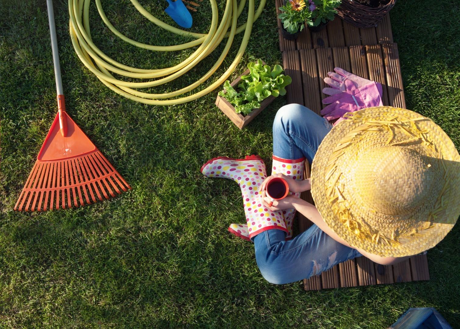 Shutterstock 360415511 Groot